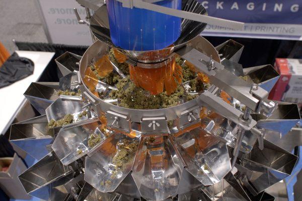 yamato-cannabis-scale(2)